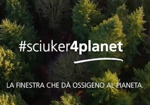 legno ....ossigeno al pianeta